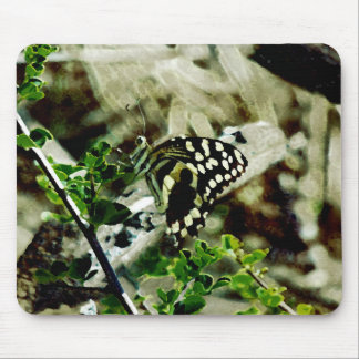 Butterfly on a twig mouse pad