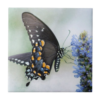 Butterfly on Blue Blossom tile
