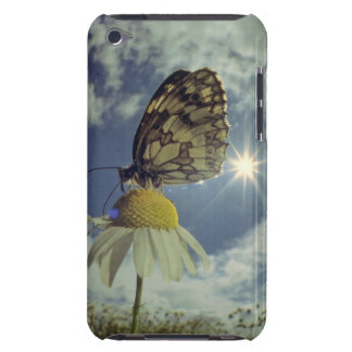 Butterfly on camomile flower with sun, iPod Case-Mate case