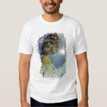 Butterfly on camomile flower with sun, tshirt
