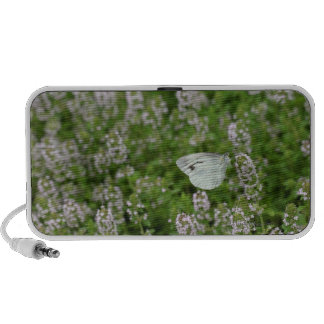 Butterfly on Creeping Thyme Speaker