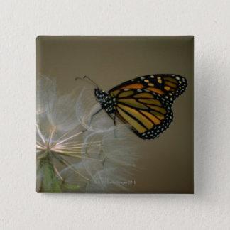 Butterfly on dandelion 15 cm square badge