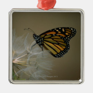Butterfly on dandelion christmas ornament