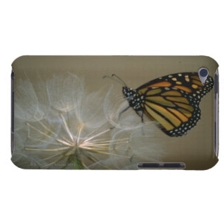 Butterfly on dandelion iPod touch Case-Mate case