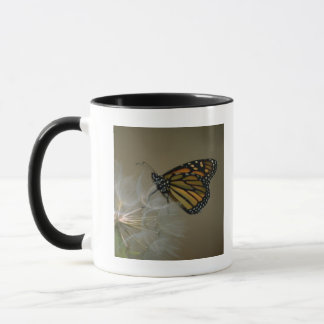 Butterfly on dandelion mug