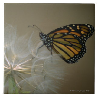 Butterfly on dandelion large square tile