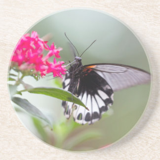butterfly on flower coaster