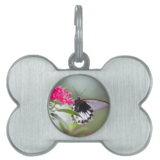 butterfly on flower pet tag