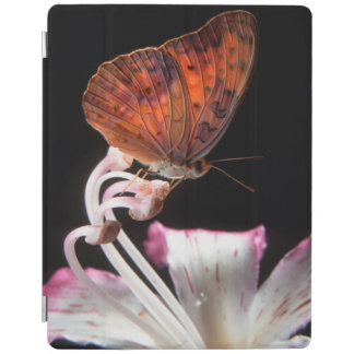 Butterfly On Flower, Rustenburg, Northwest iPad Cover
