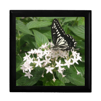 Butterfly on Flowers Large Square Gift Box
