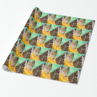 butterfly on fruit wrapping paper