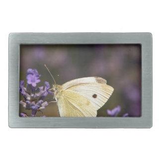 Butterfly on lavender belt buckles
