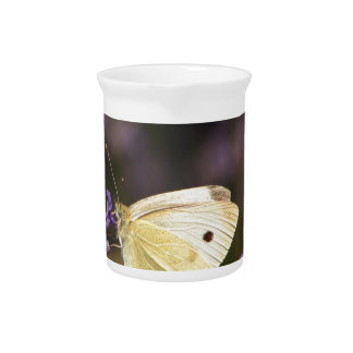 Butterfly on lavender pitcher