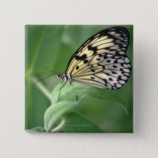 Butterfly on leaf 15 cm square badge