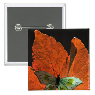 Butterfly on leaf 2 15 cm square badge