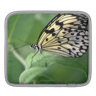 Butterfly on leaf iPad sleeve