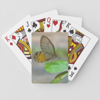 Butterfly On Leaf, Iquitos, Maynas, Peru Playing Cards