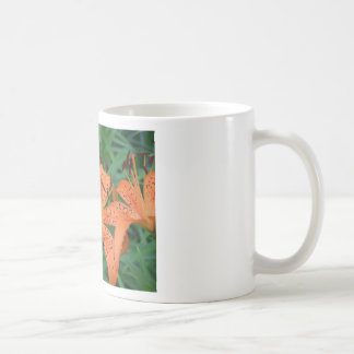 Butterfly on Lilly Basic White Mug