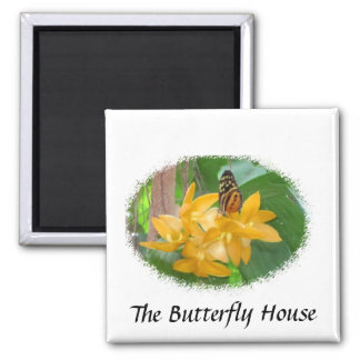 Butterfly on Orchid Square Magnet