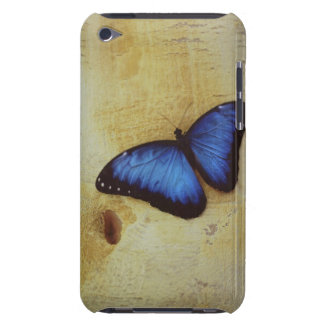 Butterfly on painted surface of woman's stomach iPod touch covers