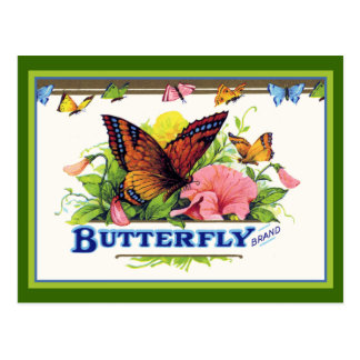 Butterfly on Petunias Postcard
