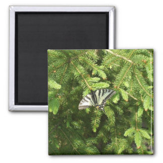Butterfly on Pine Tree Refrigerator Magnets