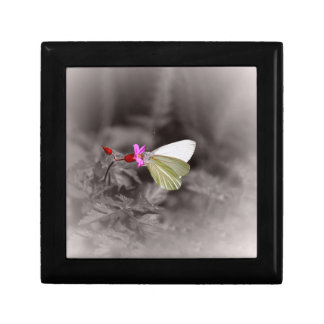 Butterfly On Pink Flower Small Square Gift Box