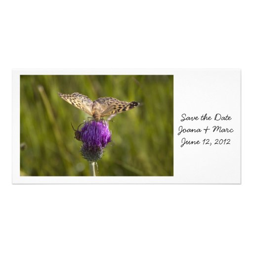 Butterfly on purple flower Save the Date Card Custom Photo Card