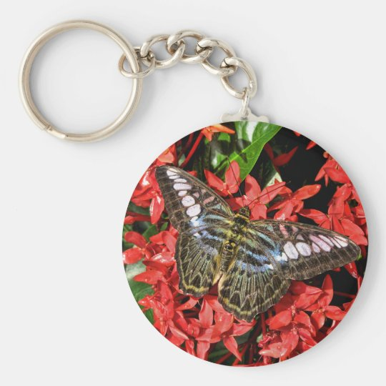 Butterfly on Red Flowers Basic Round Button Key Ring