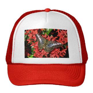 Butterfly on Red Flowers Trucker Hat