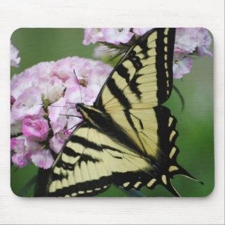 Butterfly On Sweet Williams Flower Mousepad