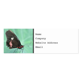 Butterfly on the Edge of a Leaf. Pack Of Skinny Business Cards