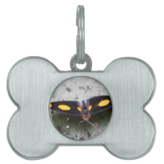 butterfly on the flower pet ID tag