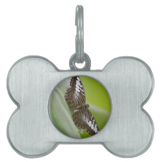 butterfly on the flower pet name tag