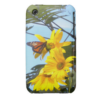 Butterfly on the Sunflower iPhone 3 case