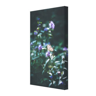 Butterfly on the wild flowers canvas print