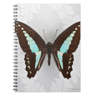 Butterfly on wallpaper background notebook