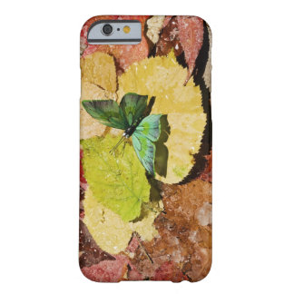 Butterfly on wet autumn leafs iPhone 6 case