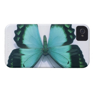 Butterfly on white Case-Mate iPhone 4 case