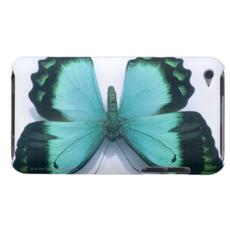 Butterfly on white iPod Case-Mate cases