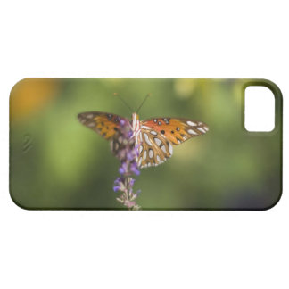 Butterfly on wildflowers iPhone 5 cases