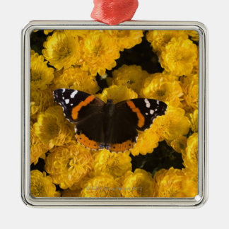 Butterfly on yellow asters Silver-Colored square decoration