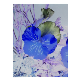 Butterfly Pansy Poster