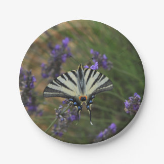 Butterfly - Papilio machaon on flowering lavender Paper Plate