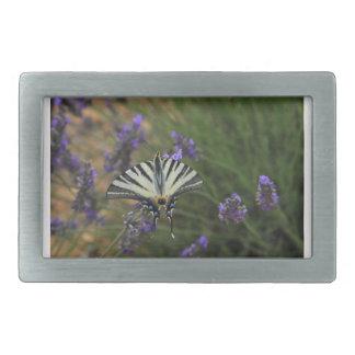 Butterfly - Papilio machaon on flowering lavender Rectangular Belt Buckle