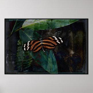 Butterfly Pavilion - Tygre Poster