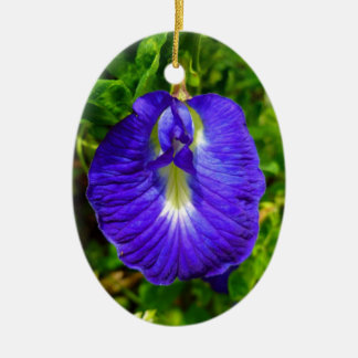 Butterfly Pea Christmas Ornament
