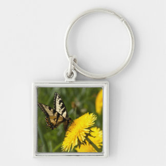 Butterfly Perch Silver-Colored Square Key Ring