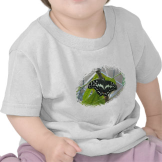 Butterfly Photo Baby T-Shirt