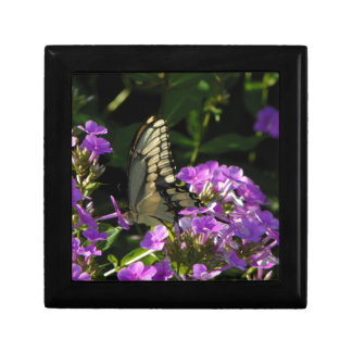 Butterfly Photo Gift Small Square Gift Box